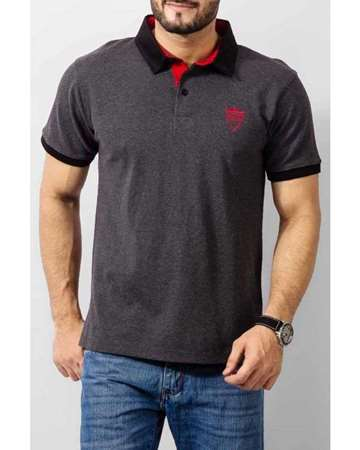 Buy Qzs Clothing Grey Cotton Polo Shirt with Red QZ Logo  online