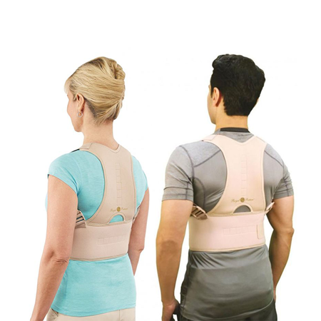 Buy Royal Posture - Back Support  online