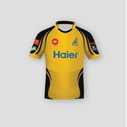Original Peshawar Zalmi T-shirt with Your Name