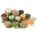 Picture for category Daal (Grains)